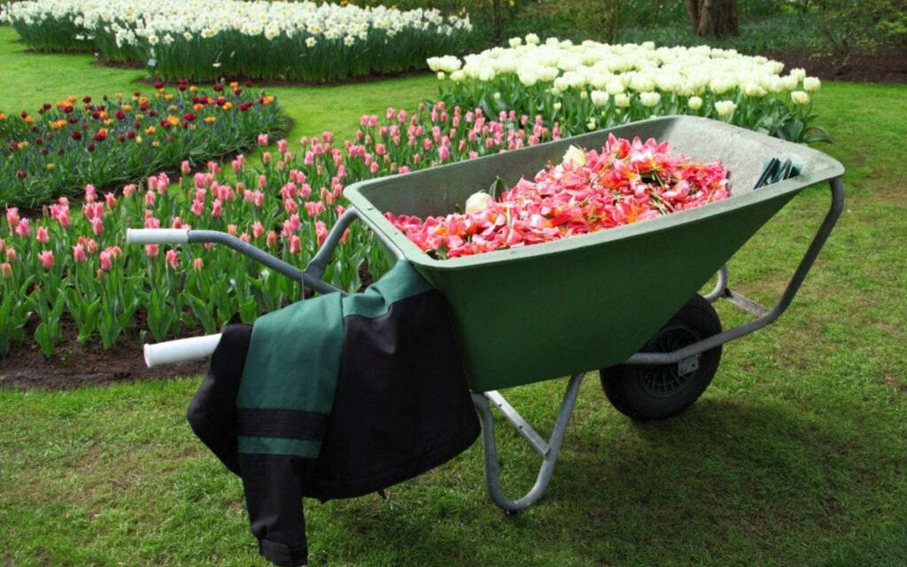 Skal du låne penge til din have?